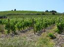 Property <b class='safer_land_value'>105 ha 60 a 24 ca</b> Aude