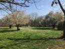 Property <b class='safer_land_value'>02 ha </b> Loiret
