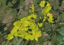 Property <b class='safer_land_value'>192 ha </b> Indre