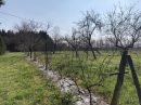 Property <b class='safer_land_value'>25 ha 50 a 20 ca</b> Lot-et-Garonne
