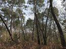 Property <b class='safer_land_value'>30 ha 63 a 36 ca</b> Dordogne