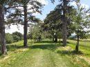 Property <b>07 ha 94 a </b> Haute-Garonne
