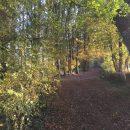 Property <b>14 ha 57 a </b> Mayenne