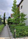 Appartement 43 m² Bischoffsheim  2 pièces
