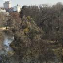 Sur le Bois de Vincennes