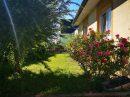 6 pièces 135 m² Village-Neuf   Maison