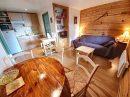 Appartement 33 m² ustou  2 pièces