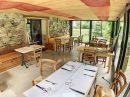 Immobilier Pro 177 m² AULUS LES BAINS  5 pièces