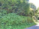 Parcelles de bois Couflens 6ha 76a 01ca
