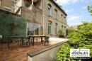 Maison   344 m² 10 pièces