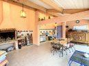 8 pièces 257 m² Maison  Montmerle-sur-Saône