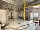 Immobilier Pro  La Chapelle-de-Guinchay Secteur 1 0 pièces 500 m²