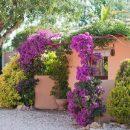 Maison  Jesus Pobre Alicante 0 pièces 380 m²