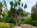 Maison 275 m² Denia Alicante 0 pièces