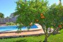 Maison  Pedreguer Alicante 221 m² 0 pièces