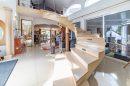 Morsang-sur-Seine  15 pièces  677 m² Maison