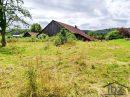 Terrain Hagenthal-le-Haut SAINT LOUIS ET 5KM 0 m²  pièces