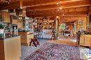 Rammersmatt  10 pièces  240 m² Maison
