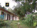 Maison 90 m² Saint-Amour  5 pièces