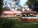 Immeuble  Lubumbashi  300 m²  pièces