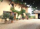 Maison 202 m² Saint-Étienne-sur-Chalaronne graboz 7 pièces
