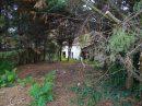 Maison Dun-sur-Auron  0 m² 6 pièces