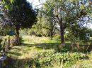 1.3 hectare avec maison !! VISITE VIRTUELLE SUR DEMANDE