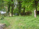 5 pièces  Maison 115 m² ECUELLES  77250