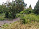 Maison  Ransart Grand Charleroi et 14 communes 300 m² 12 pièces
