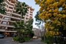 7 pièces  Appartement  240 m²