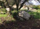 Porto-Vecchio Section B  Terrain  pièces 0 m²