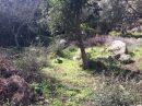 Terrain   pièces 0 m² Porto-Vecchio Section B