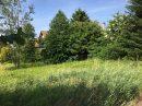 Terrain 984 m² Lipsheim   pièces