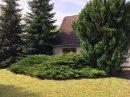 984 m²  pièces Terrain Lipsheim