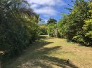 TARAVAO. Grand terrain + maison F5