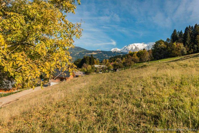 VenteTerrainSAINT-GERVAIS-LES-BAINS74170Haute SavoieFRANCE