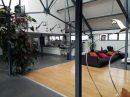 7 pièces 255 m² Loos  Appartement