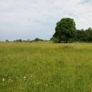 Propriété sur 5 hectares