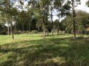 Terrain  Bussac-Forêt  0 m²  pièces
