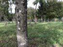 0 m² Terrain Bussac-Forêt   pièces