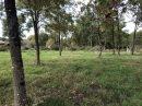 pièces Bussac-Forêt  0 m² Terrain