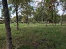 0 m² Bussac-Forêt  Terrain  pièces