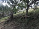 Terrain  Nouméa Vallée des Oliviers 0 m²  pièces
