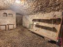 Maison St romain au mont d or  200 m² 7 pièces
