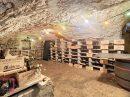 Cailloux-sur-Fontaines  Maison  190 m² 8 pièces
