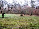 Terrain 0 m² Dampierre-les-Bois   pièces