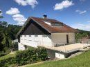 333 m² Maison  17 pièces
