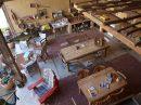 10 pièces  Maison Antin  300 m²