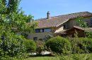 Maison  Castelnau-Magnoac  10 pièces 400 m²