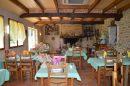 10 pièces Maison Castelnau-Magnoac   400 m²